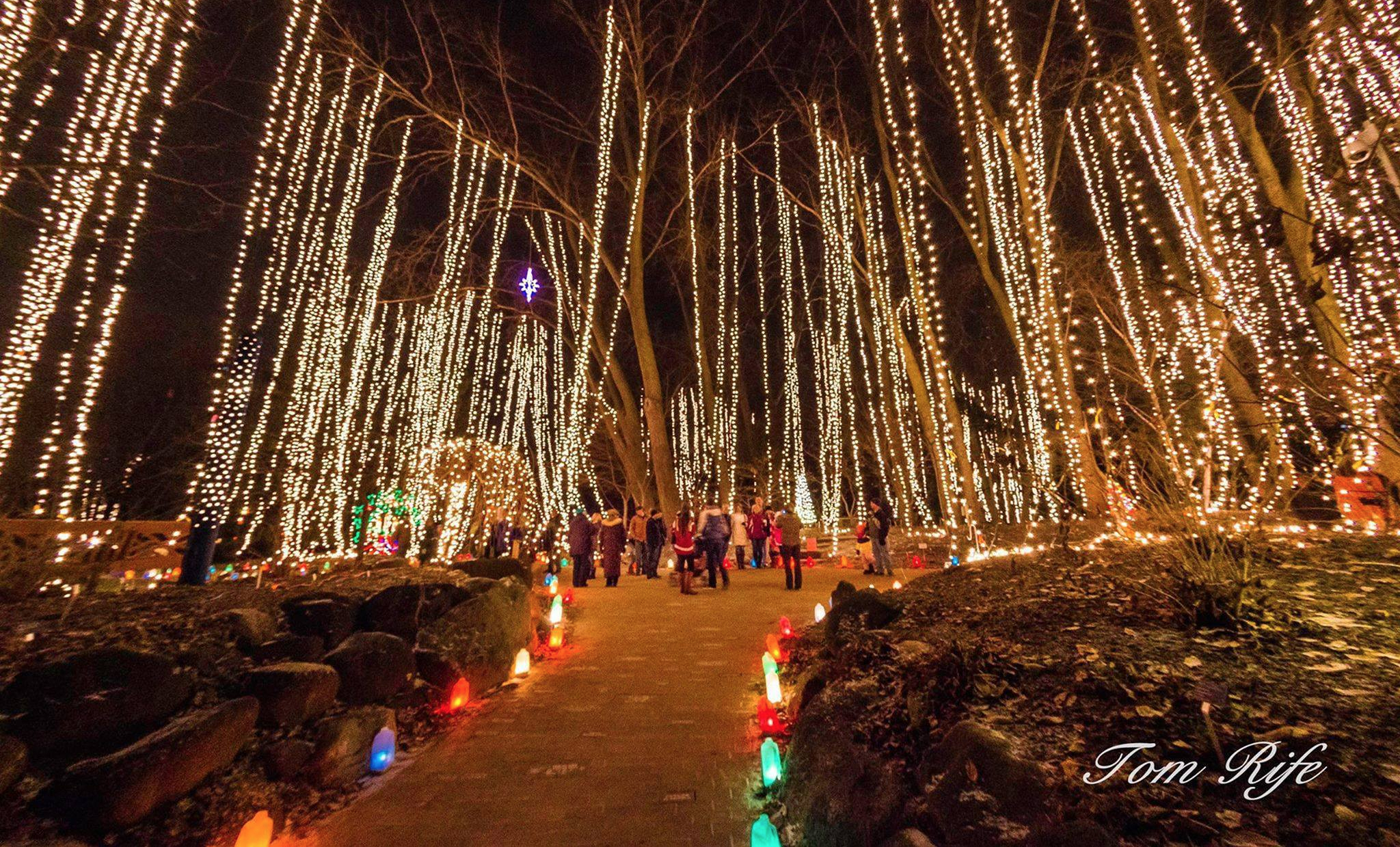 Top Ways to Add Sparkle to Your Holiday Season in Janesville, Wisconsin