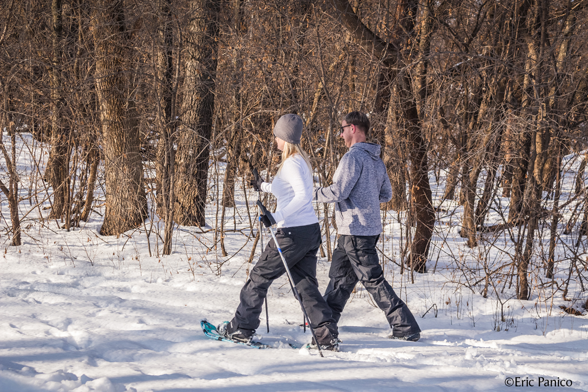 Embrace Winter With These Fun Activities